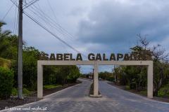 Galapagos-2594