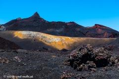 Galapagos-2908