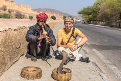 Jaipur-2399