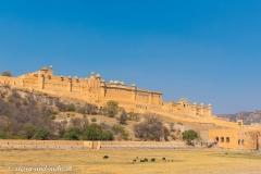 Jaipur-2408