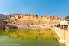 Jaipur-2413