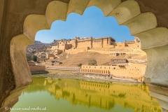 Jaipur-2416