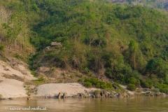 Mekong-6462