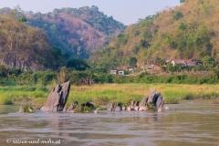 Mekong-6630