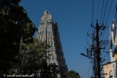 Madurai-1005