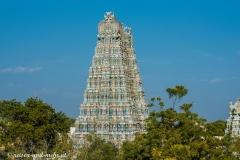 Madurai-1089