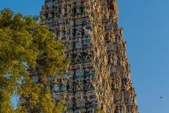 Madurai-1129