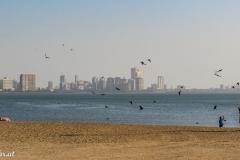 Mumbai-1825