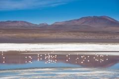 Bolivien-1138