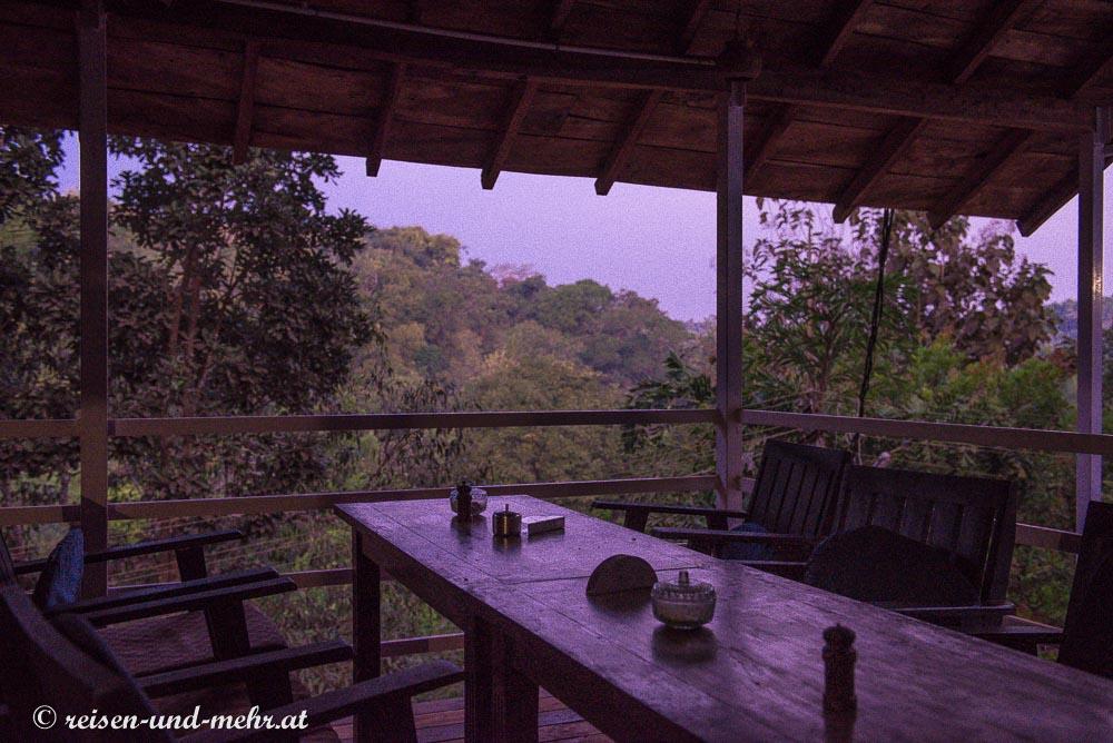 Ausblick in den Dschungel, Agonda, Goa