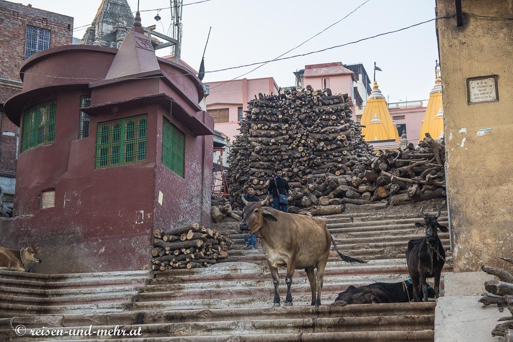 Holz für die Verbrennungen am Manikarnika Ghat in Varanasi