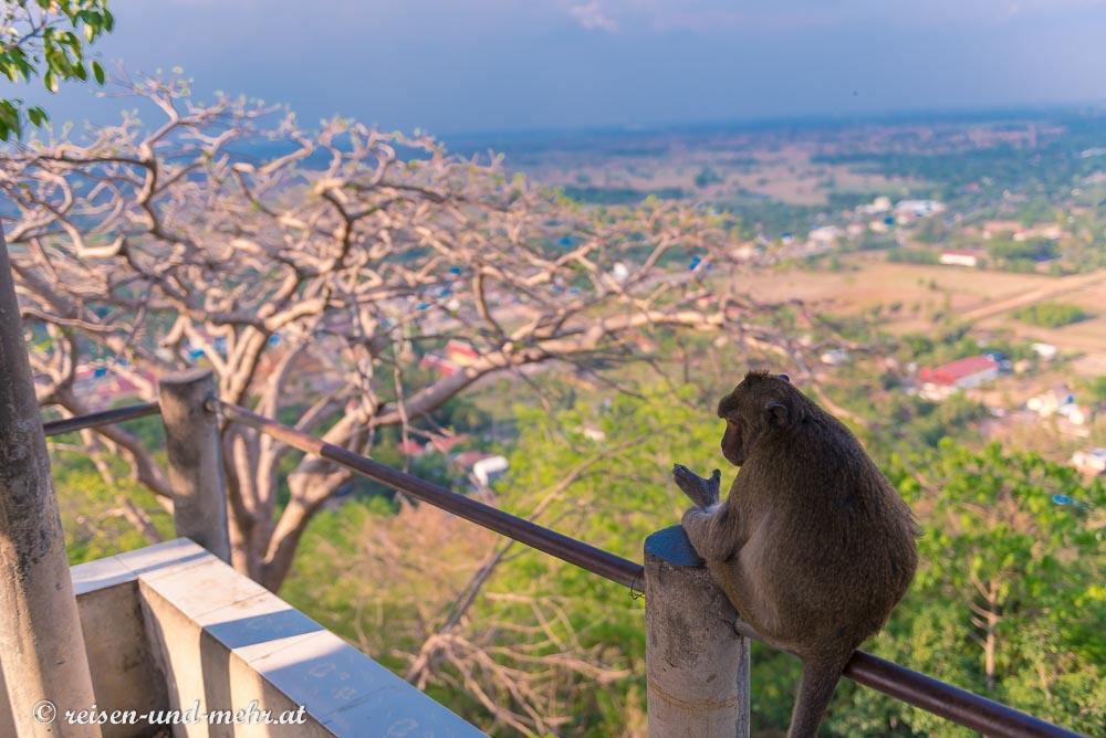 Affentempel am Phnom Sampeau, Battambang, Kambodscha