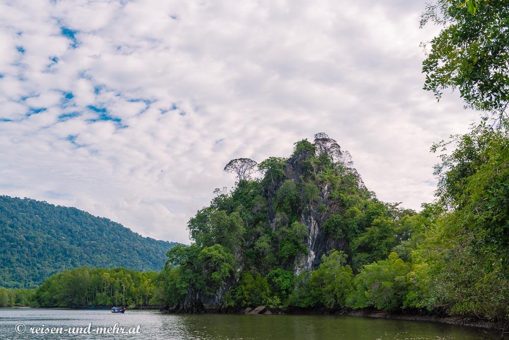 Mangrovengebiet in Langkawi