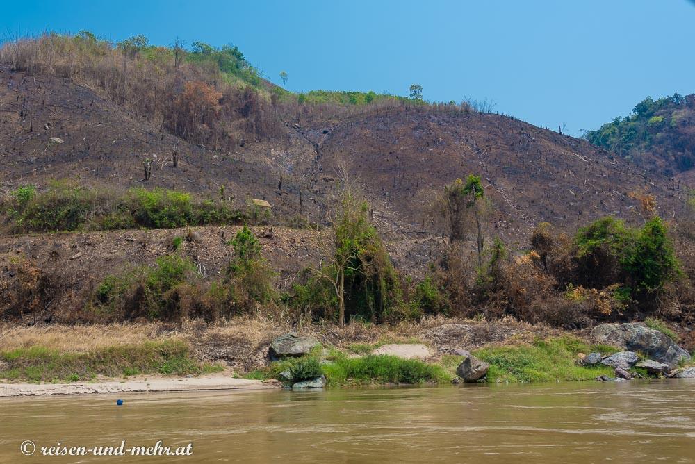 Brandrodungsschneise am Mekong Ufer