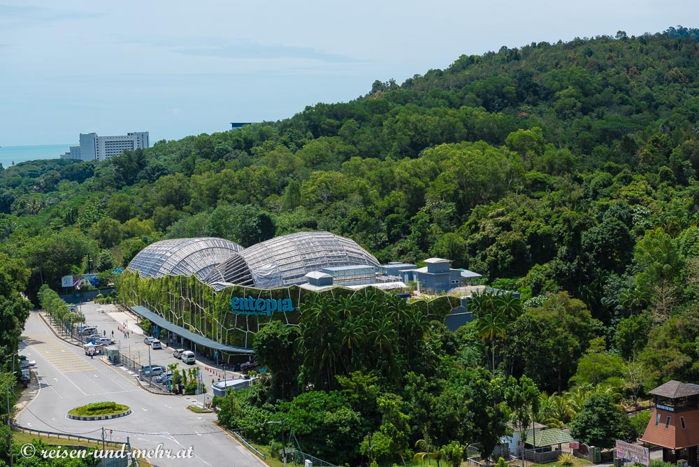 Entopia Butterfly Park, Penang