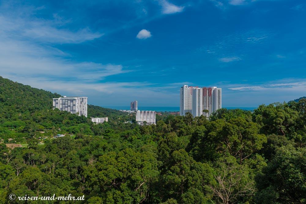 Hochhausbauten mitten im Dschungel auf Penang